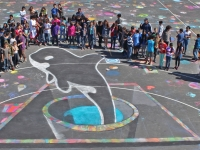 orca_chalk_drawingonearth01