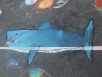 orca_chalk_drawingonearth07